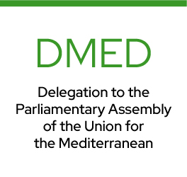 Delegation to the Parliamentary Assembly of the Union for the Mediterranean